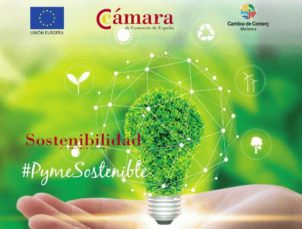 Nuevo Programa de Sostenibilidad para Pymes